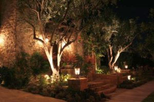 electrically installed landscape lighting